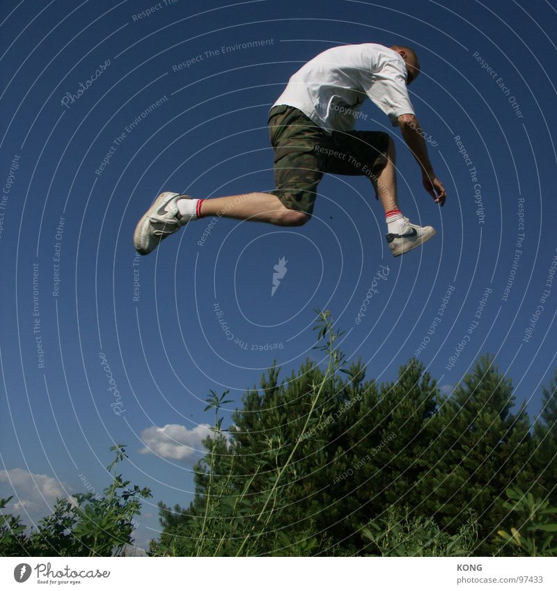 invisible obstacles springen Himmel himmelblau Pflanze Botanik Wald Nadelbaum Turnschuh Vogel Abheben Freude Leichtathletik Mann hoch springen hochspringen