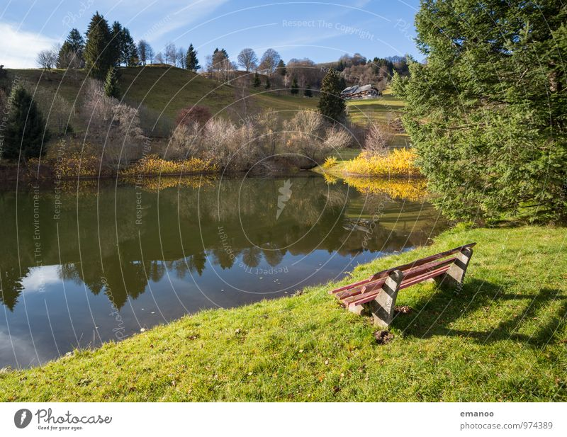 die Bank am See Natur Ferien & Urlaub & Reisen Pflanze grün Wasser Sommer Baum Erholung Landschaft ruhig Wald Berge u. Gebirge Wärme Herbst Gras Freiheit