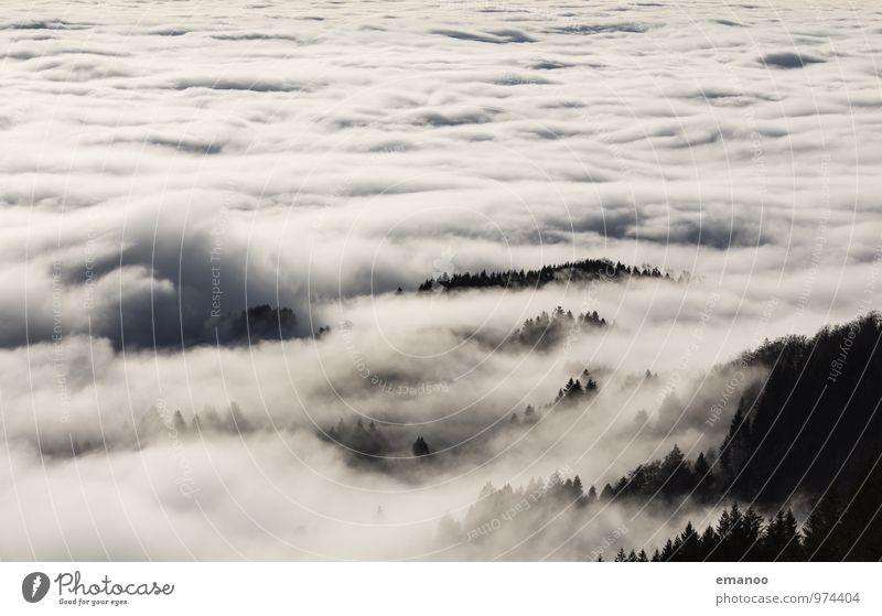 Nebelwald Ferien & Urlaub & Reisen Ausflug Ferne Freiheit Berge u. Gebirge wandern Umwelt Natur Landschaft Luft Himmel Wolken Klima Wetter schlechtes Wetter