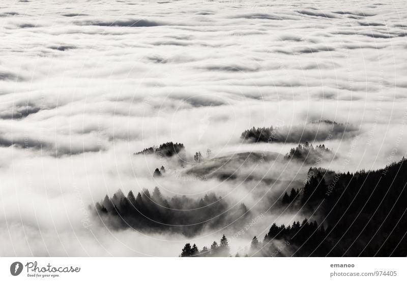 mehr Nebel Himmel Natur Ferien & Urlaub & Reisen Baum Landschaft Wolken Ferne Wald Umwelt Berge u. Gebirge Herbst Bewegung Freiheit fliegen Luft Wetter