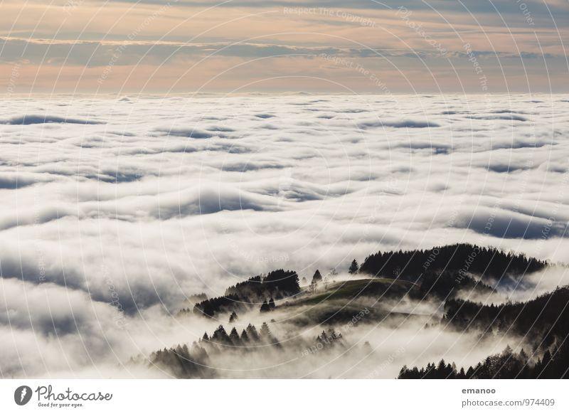 im Nebelmeer Himmel Natur Ferien & Urlaub & Reisen Baum Landschaft Wolken Ferne Wald Umwelt Berge u. Gebirge Herbst Freiheit Horizont Luft Wetter