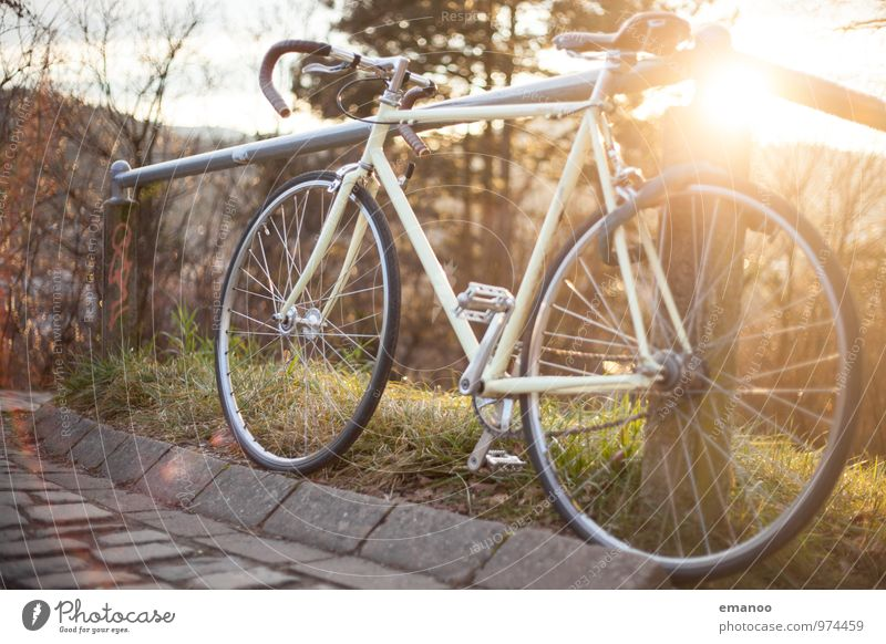 Retrorenner Natur Ferien & Urlaub & Reisen alt Freude Wege & Pfade Sport Stil Gesundheit Lifestyle Freizeit & Hobby Design Verkehr Fahrrad Geschwindigkeit ästhetisch Ausflug