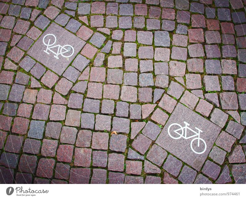 Gegenverkehr Fahrradfahren Verkehrszeichen Verkehrsschild Fahrradweg Kopfsteinpflaster Zeichen Schilder & Markierungen ästhetisch außergewöhnlich einzigartig