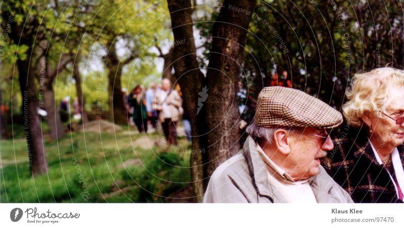 Opa&Oma Wald Senior Großvater Baum grau sprechen grün Grab Friedhof ruhig Zusammensein Einsamkeit Mütze Prozession Porträt Gras Katholizismus Sonnenbrille Jacke