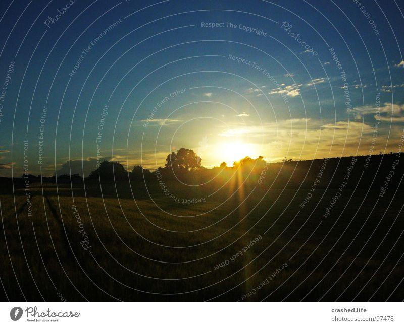 Sundown VI Feld Sonnenuntergang Gelbstich gelb grün Gras Ferne Weizen Unendlichkeit Licht Sonnenaufgang Abend Morgen Sonnenstrahlen Sommer Physik Himmel Straße