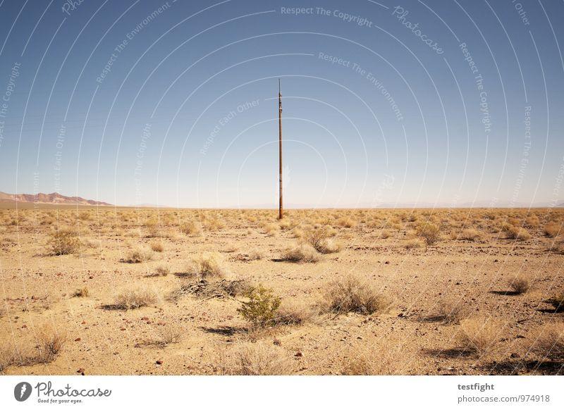 the lonesome crowded west Natur Pflanze Landschaft Umwelt Wärme hell Sand Wüste heiß Strommast Glatze karg abweisend Death Valley National Park