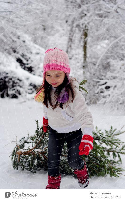 Schönes Mädchen Spazierengehen mit Baumwahl Freude Abenteuer Winter Schnee Winterurlaub Feste & Feiern Weihnachten & Advent Mensch Kind Körper Kopf 1 3-8 Jahre