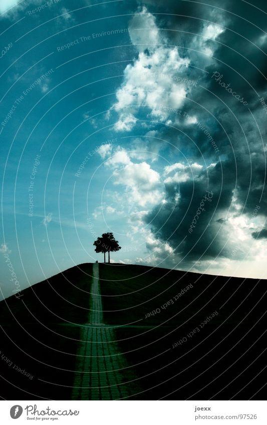 Rampe ins Glück II Baum bedrohlich Wolken Bürgersteig Gewitterwolken Gras Hügel Lebenslauf Steigung Wiese Zukunft Garten Park Himmel anhöhe aufwärts
