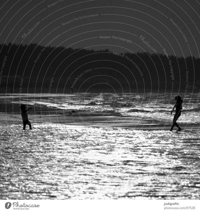 Am Strand Mensch Wasser Meer schwarz Spielen See 2 Tanzen Küste laufen Schwimmen & Baden Ostsee Abendsonne