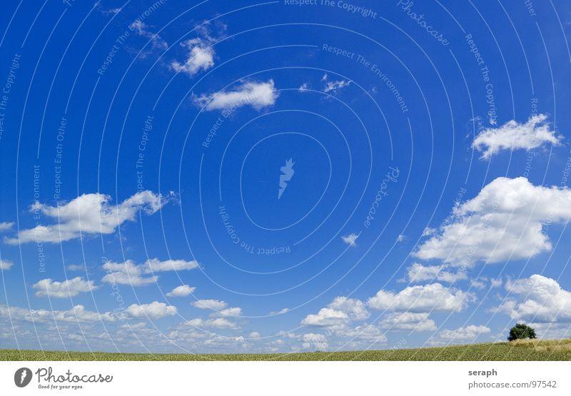 Landschaft Himmel Natur Sommer Baum Erholung ruhig Wolken Ferne Umwelt Wiese Gras natürlich Freiheit Hintergrundbild Horizont