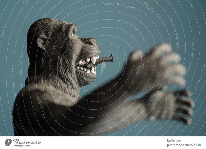 die firma Arbeit & Erwerbstätigkeit Beruf Business Mittelstand Unternehmen Karriere Erfolg Sitzung sprechen 1 Mensch Tier füttern Gorilla Affen Geschäftsleute