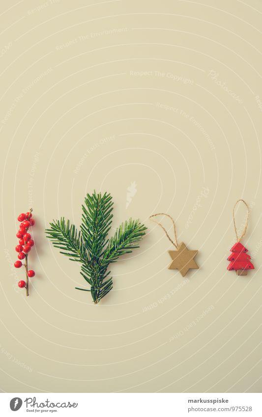 weihnachts decoration stechpalme Weihnachten & Advent grün rot Innenarchitektur Stil Lifestyle Wohnung Häusliches Leben Dekoration & Verzierung elegant gold Ast