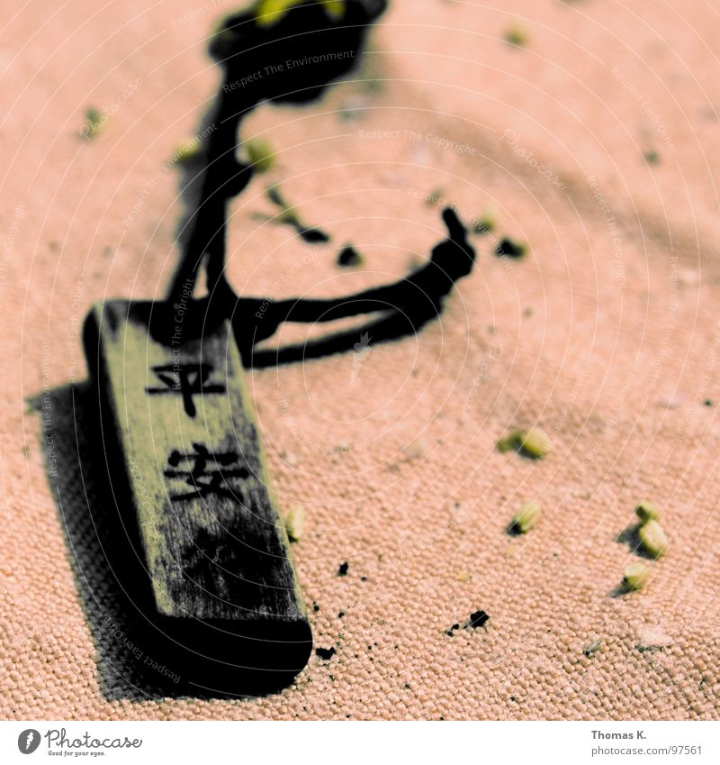 Chinesische Weisheit. Holz Seil Schriftzeichen Asien Zeichen China Schnur Schmuck Leder Staub Tuch Armband Redewendung Halsband
