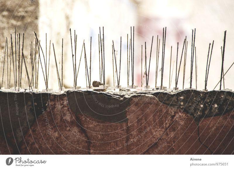 fliegen | kein Landeplatz Wand Architektur Mauer braun Metall gefährlich Spitze Beton bedrohlich Baustelle Backstein Ruine Aggression Verbote stachelig