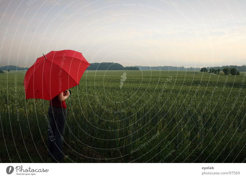 Gibt's im Juni Donnerwetter, wird auch das Getreide fetter. Frau Ferien & Urlaub & Reisen grün rot Sommer Ferne Landschaft Frühling Freiheit Regen Feld Ausflug stehen Romantik Jeanshose Schutz