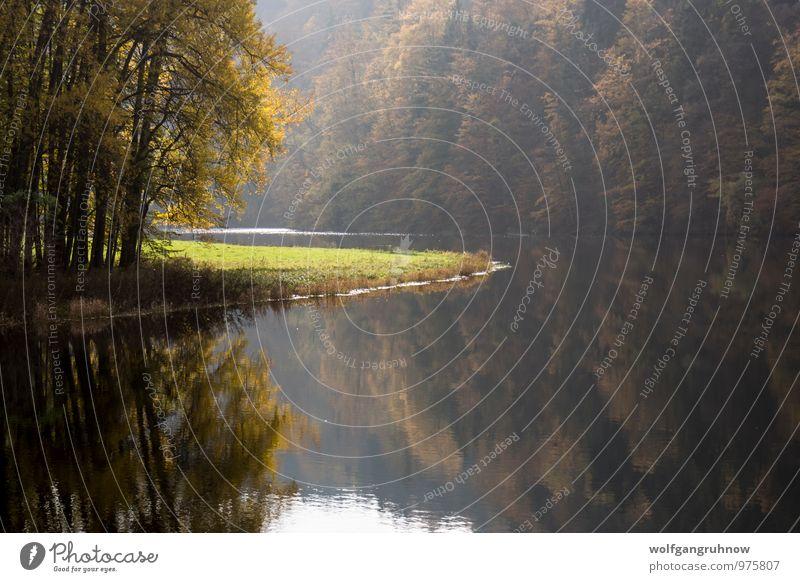 Herbst am Fluss Freizeit & Hobby Ausflug Berge u. Gebirge Natur Wasser Sonne Schönes Wetter Baum Gras Sträucher Wald Hügel Küste Flussufer Menschenleer