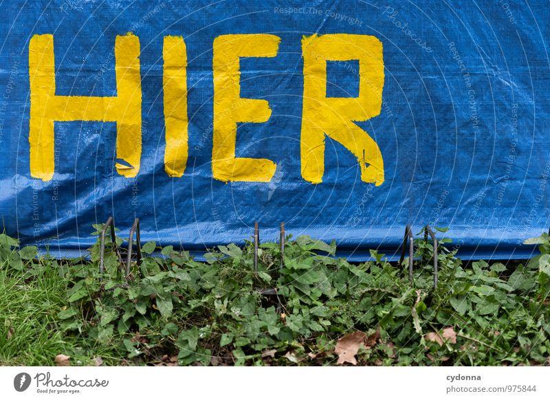 Ankunft Stadt Farbe Sommer Wand Leben Mauer Lifestyle Freiheit Fahrrad Schriftzeichen Beginn Zukunft Studium Hinweisschild Vergänglichkeit Hilfsbereitschaft