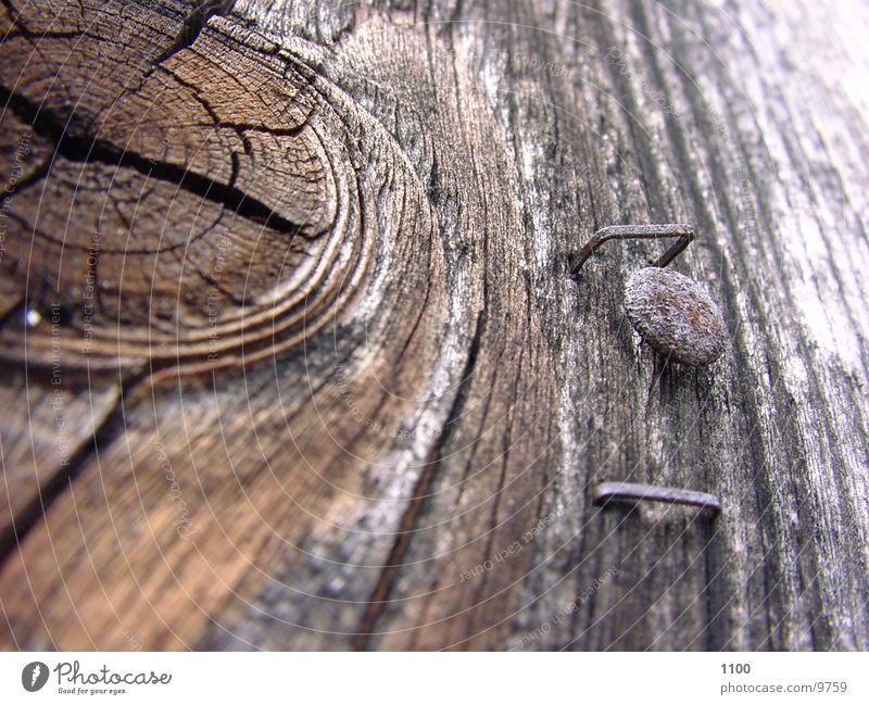 Holz alt Holz verfallen Makroaufnahme Nagel Maserung Fototechnik morsch