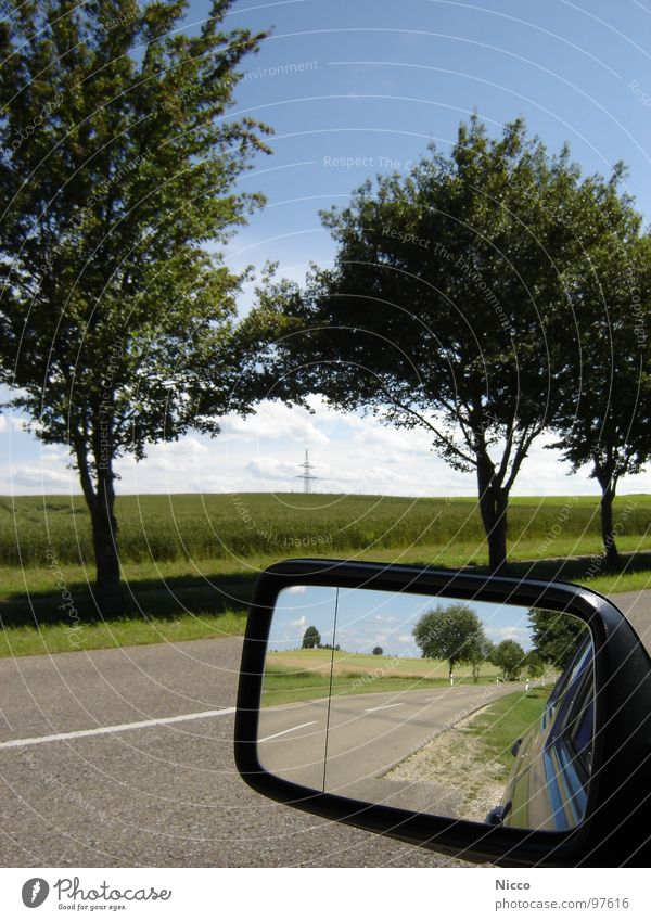 rückblick Baum grün Blatt Apfelbaum Kirsche schlechtes Wetter Ferne Horizont Wolken weiß schön unbeständig heiß Asphalt Teer Straßenbelag Spiegel Rückspiegel