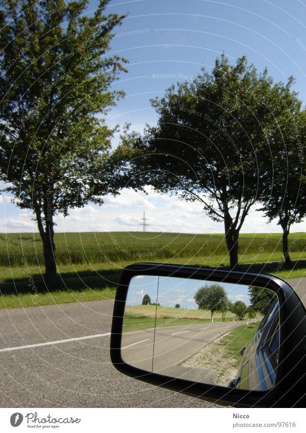 rückblick schön Himmel weiß Baum grün blau Pflanze Ferien & Urlaub & Reisen Blatt Wolken Ferne Straße Wiese Gras Freiheit Holz