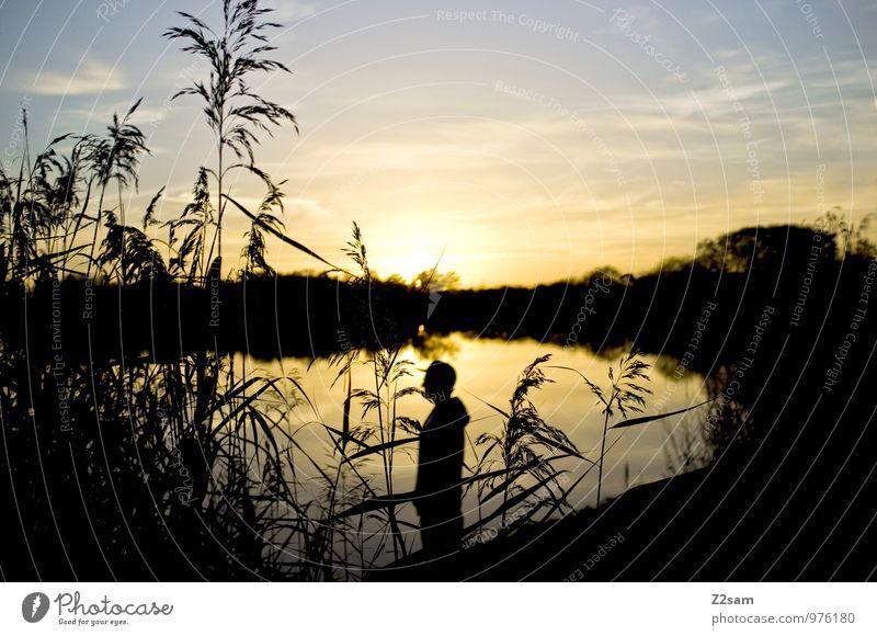 Feierabend Hipster Himmel Natur Jugendliche Sommer Erholung Landschaft ruhig Junger Mann 18-30 Jahre Erwachsene Stil Glück See Lifestyle maskulin träumen