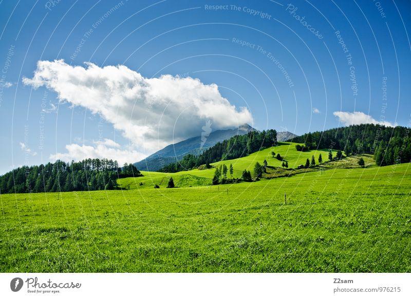 Südtiroler Land Himmel Natur blau grün Sommer Landschaft ruhig Wolken Wald Umwelt Berge u. Gebirge Wiese Gras natürlich Sträucher ästhetisch
