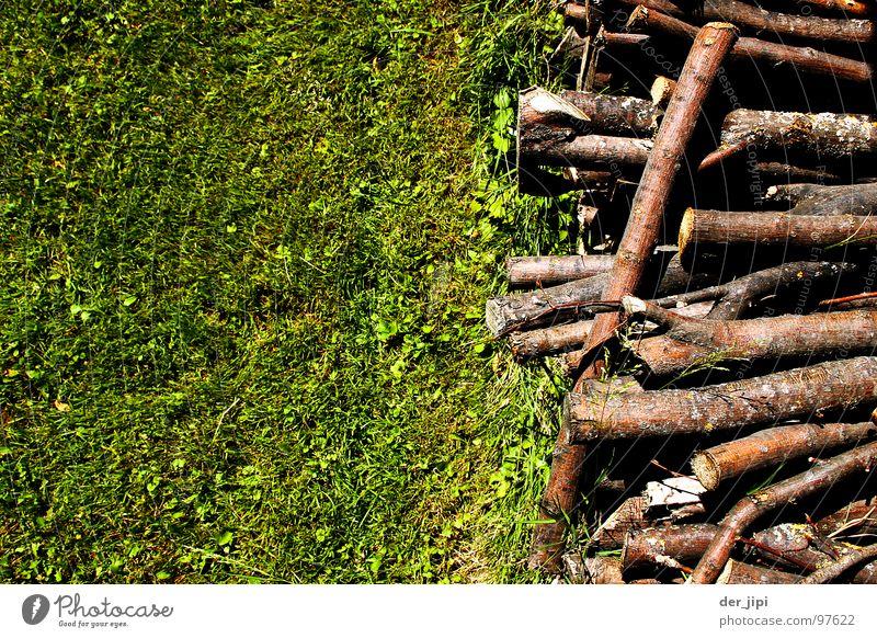 Hol's Holz! Wiese Stapel aufgereiht Gras Brennholz grün braun Brennstoff heiß Physik Baum durcheinander Am Rand Feuerstelle liegen Reihe scheit Brand Wärme