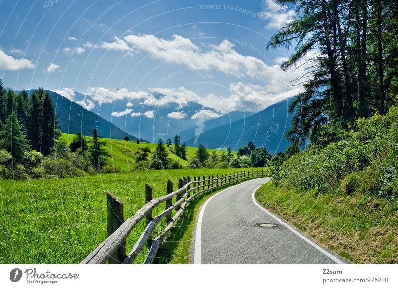 Abfahrt Umwelt Natur Landschaft Himmel Wolken Sommer Schönes Wetter Baum Sträucher Wiese Alpen Berge u. Gebirge Verkehrswege Straße nachhaltig natürlich blau