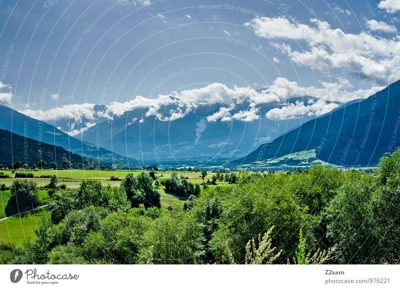 Vinachgau Umwelt Natur Landschaft Himmel Wolken Sommer Schönes Wetter Baum Sträucher Wiese Alpen Berge u. Gebirge Ferne nachhaltig natürlich blau grün ruhig Tal