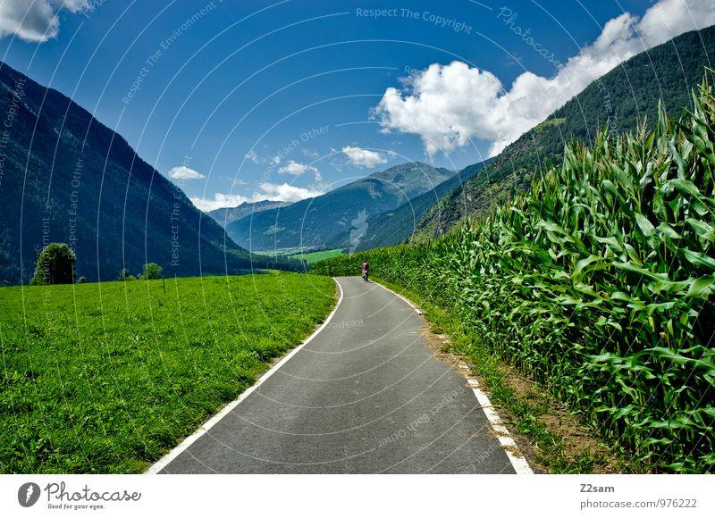 Etschradweg Himmel Natur Ferien & Urlaub & Reisen blau grün Sommer Erholung Landschaft ruhig Wolken Umwelt Berge u. Gebirge natürlich Gesundheit Sträucher
