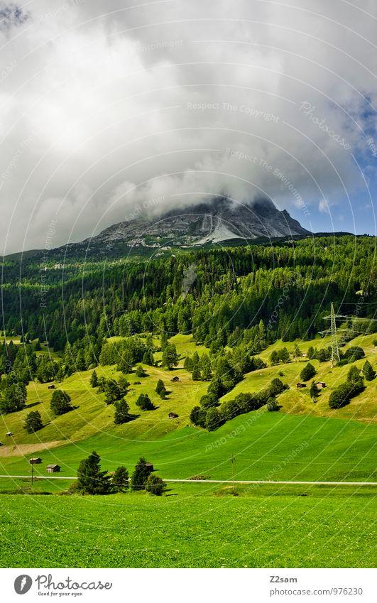 Raucher Umwelt Natur Landschaft Wolken Gewitterwolken Sommer Klima Klimawandel schlechtes Wetter Baum Sträucher Wald Urwald Hügel Felsen Alpen Berge u. Gebirge