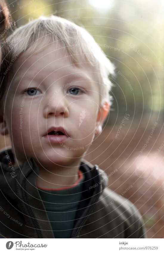 * Freizeit & Hobby Ausflug Waldspaziergang Kleinkind Junge Kindheit Leben Gesicht 1 Mensch 1-3 Jahre Natur Herbst Schönes Wetter Park blond Blick Gefühle