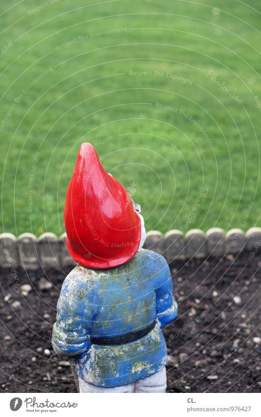 gartenzwerg Umwelt Wiese Gras Garten Wohnung Häusliches Leben Idylle Erde Dekoration & Verzierung Zukunft Sauberkeit Neugier Zaun Langeweile Erwartung