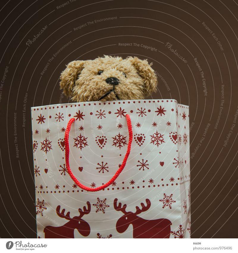 Superheld Lifestyle kaufen Freude Freizeit & Hobby Dekoration & Verzierung Feste & Feiern Weihnachten & Advent Teddybär Stofftiere Verpackung