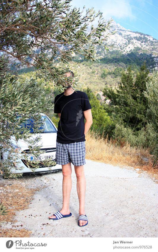 Der Tourist Mensch Natur Ferien & Urlaub & Reisen Jugendliche Mann Pflanze Sommer Sonne Baum Landschaft Junger Mann 18-30 Jahre Erwachsene Berge u. Gebirge Stil