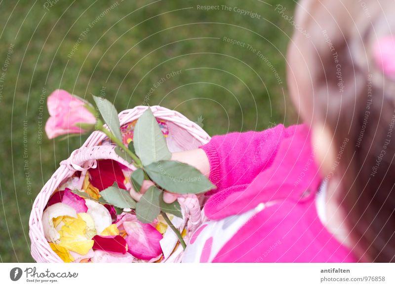 Blumenmädchen I Mensch Kind Hand Freude Mädchen feminin natürlich Haare & Frisuren Kopf rosa Familie & Verwandtschaft Körper blond Kindheit Arme