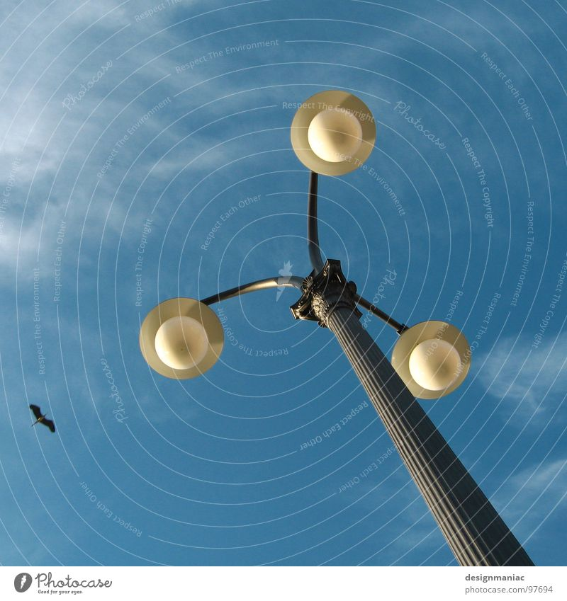Drei gegen Einen. Himmel blau schwarz Wolken gelb Lampe Wand Vogel klein Wind fliegen groß frei 3 leer Macht