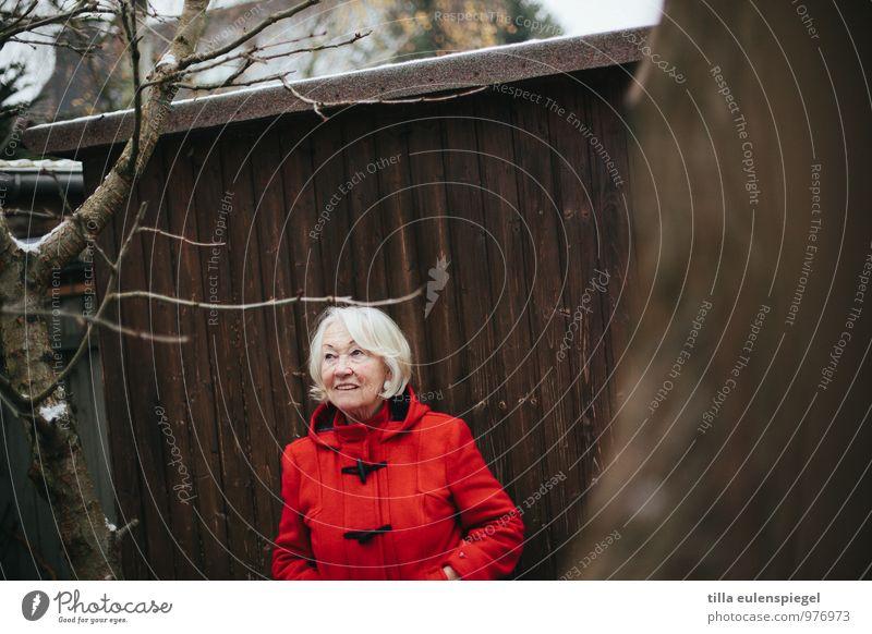 Lady in red Ausflug feminin Weiblicher Senior Frau Großmutter Leben 1 Mensch 60 und älter Winter schlechtes Wetter Eis Frost Baum Sträucher beobachten Blick