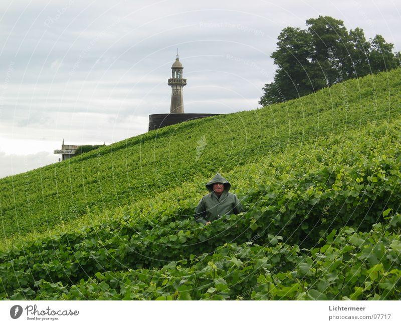 Champagnerarbeiter Regen Wein Frankreich Leuchtturm Winzer