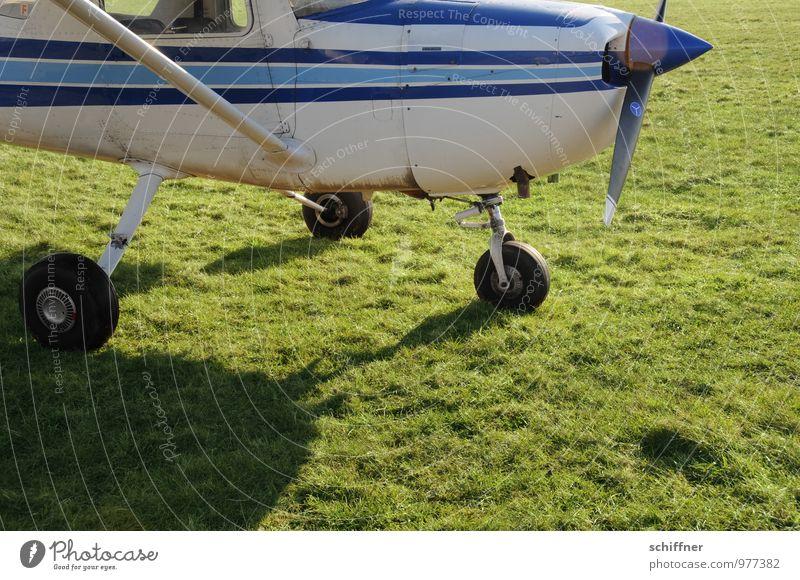 Alle Räder dran? Kann losgehn! Maschine Luftverkehr Flugzeug Sportflugzeug Fluggerät Flugplatz fliegen grün Wiese Flugangst Flugzeugfenster Propeller