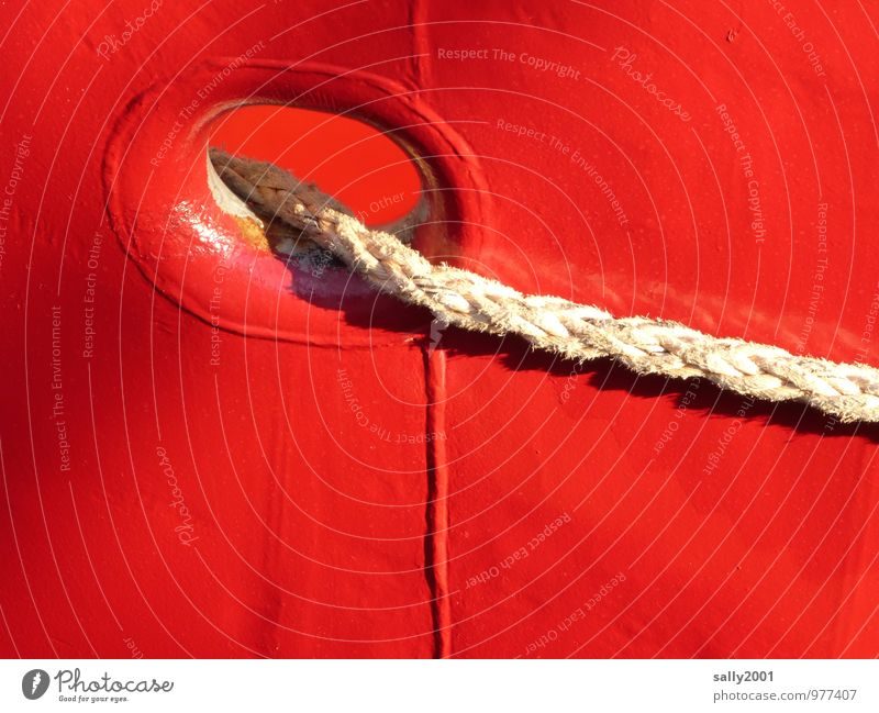 bringt Farbe in den Hafen... rot Wasserfahrzeug glänzend liegen leuchten Fröhlichkeit Seil festhalten Zusammenhalt Schifffahrt Loch Halt Fähre Fischerboot