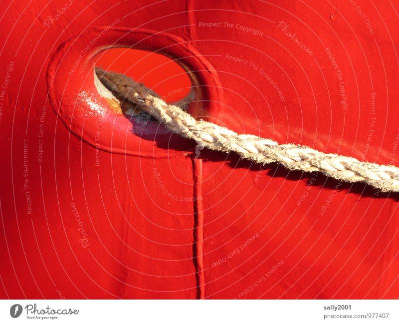 bringt Farbe in den Hafen... Schifffahrt Passagierschiff Dampfschiff Fähre Fischerboot Wasserfahrzeug Seil festhalten leuchten liegen Fröhlichkeit glänzend rot