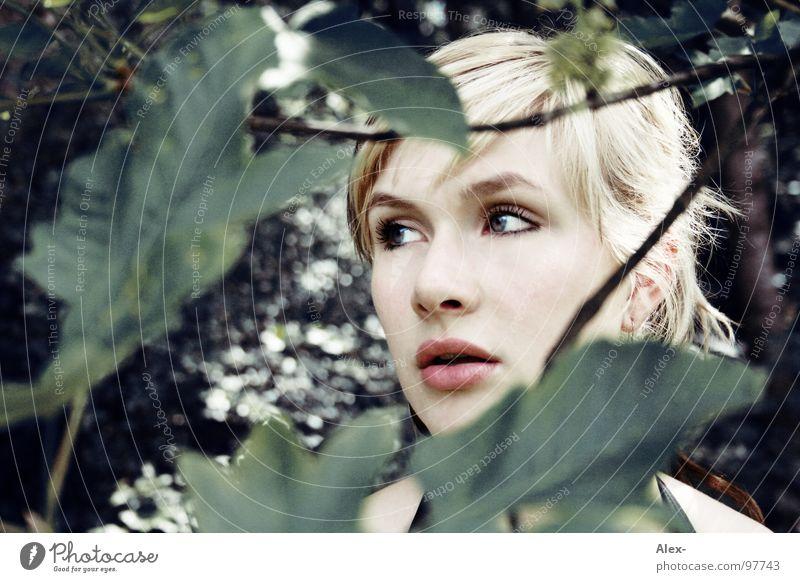 L - fe Frau schön Einsamkeit Gesicht Auge Wald Haare & Frisuren blond Angst Nase Suche süß niedlich Lippen verloren Panik