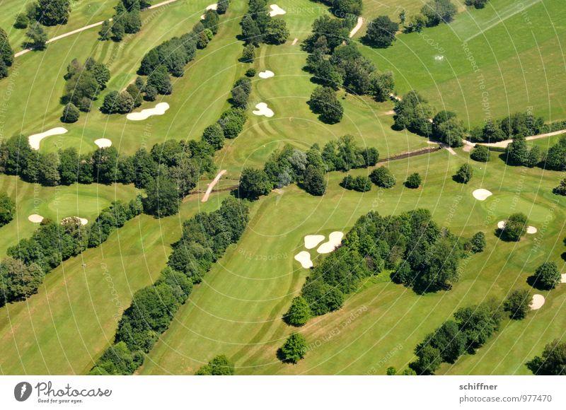 Außergewöhnlich | fleckig Landschaft Pflanze Baum Garten Park Wiese grün Golf Golfplatz Baumreihe Rasen Sportrasen Sand Sandbank Straße Wege & Pfade