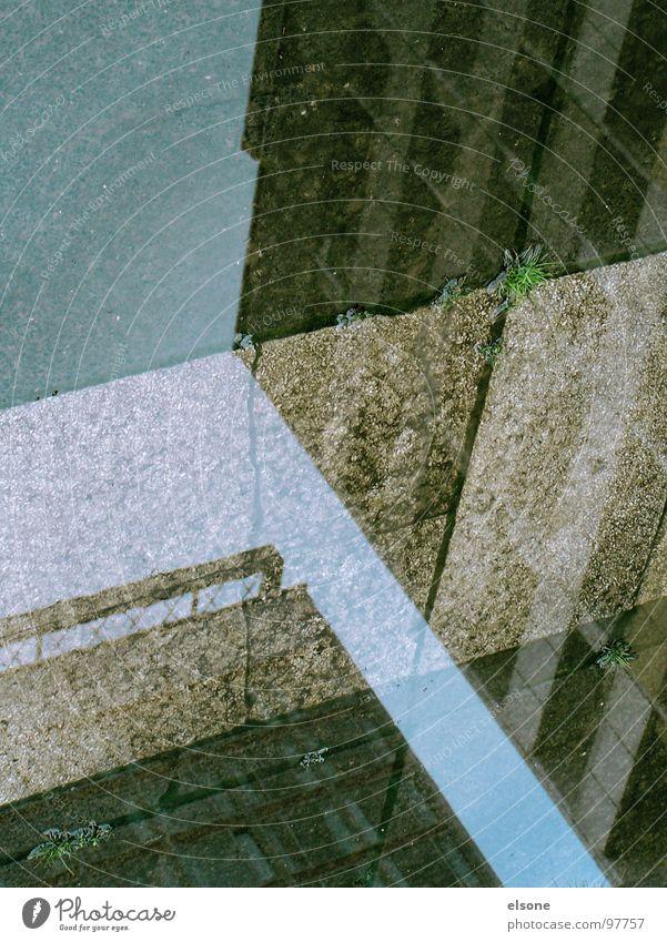 T Haus kalt Streifen Demontage nass Herbst Reflexion & Spiegelung weiß Fußgänger Bordsteinkante Fenster grün Einsamkeit Zone Dresden Hotel Prag Beton braun