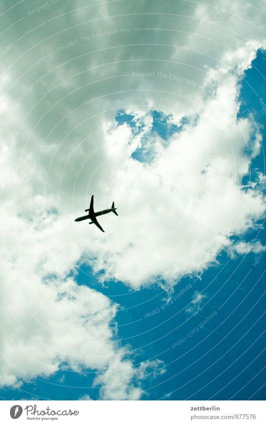 Flugzeug Himmel Ferien & Urlaub & Reisen Sommer Sonne Wolken Reisefotografie Freiheit hell fliegen oben Luftverkehr planen Güterverkehr & Logistik Flugzeugstart