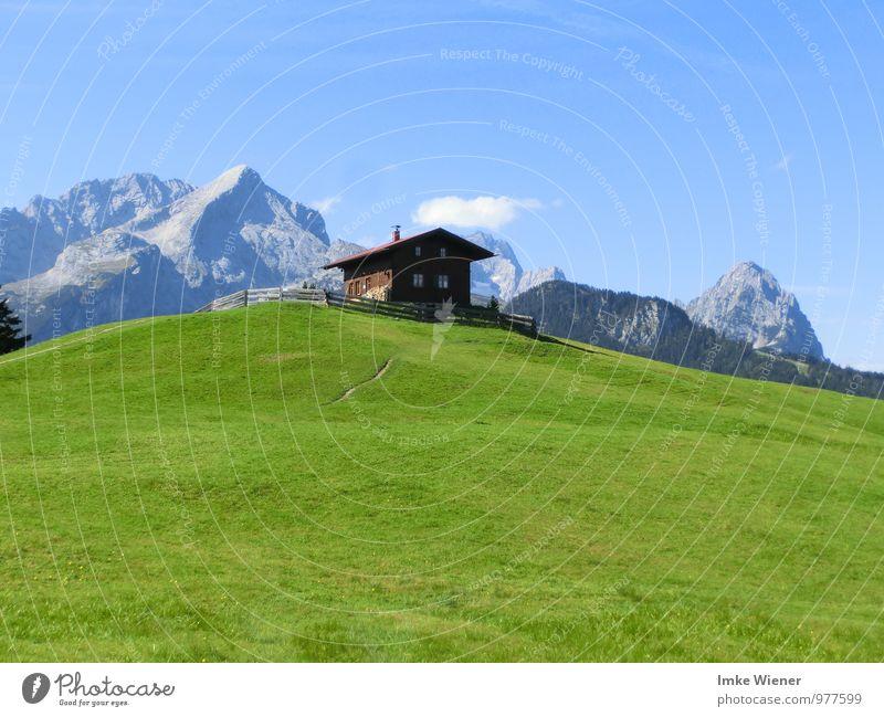 Bei Heidi auf der Alm Himmel Natur Ferien & Urlaub & Reisen blau Pflanze grün Sommer Sonne Landschaft ruhig Wolken Tier Berge u. Gebirge Wiese wandern Ausflug