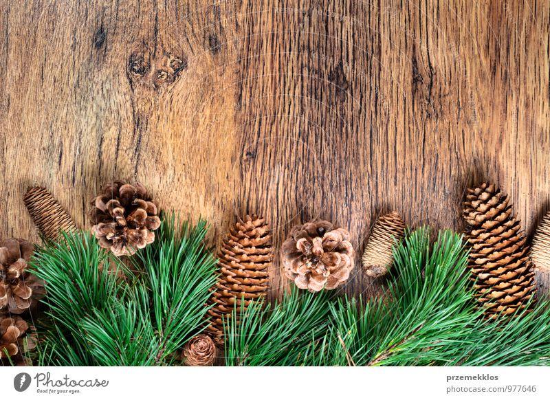 Weihnachtsdekoration Winter Dekoration & Verzierung Holz Ornament authentisch natürlich grün Tradition Textfreiraum Dezember horizontal Kiefer rustikal
