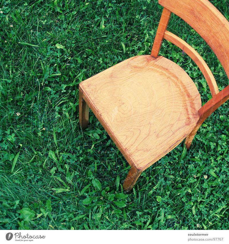 Sitzplatz III Wiese Sitzgelegenheit Holz nass kalt Einsamkeit ruhig Vogelperspektive Blatt grün braun hellbraun dunkelgrün Verzweiflung Erholung Wetter Möbel