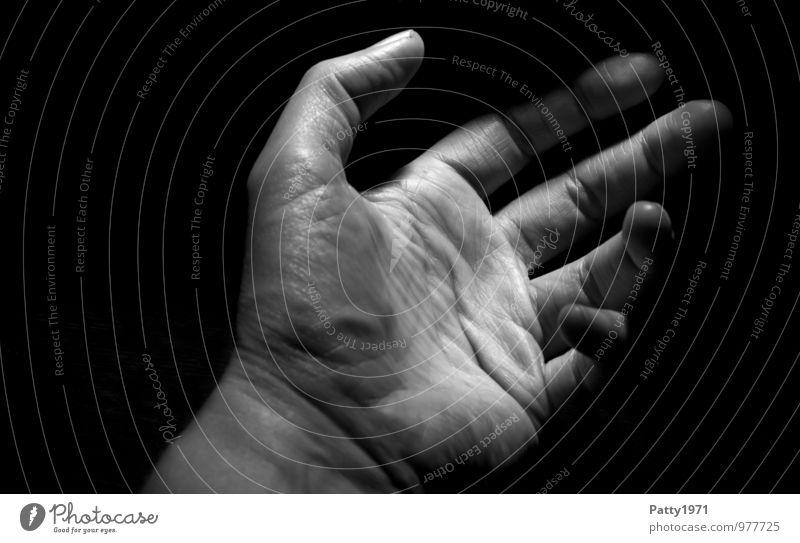 Hand Frau Erholung Hand Erwachsene feminin Gelassenheit 30-45 Jahre